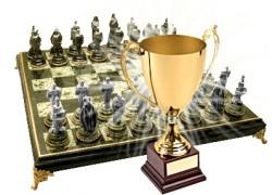 Чемпионат области по шахматам среди ветеранов