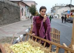 VII Межрегиональный туристский событийный фестиваль «Антоновские яблоки»