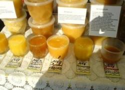 «Пчёлочка Златая» - III туристский фестиваль
